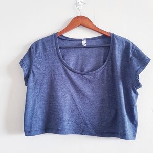 American Apparel Loose Gray Crop Top One Size